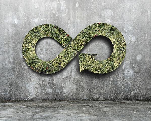 La biomasa, pilar de la economía circular