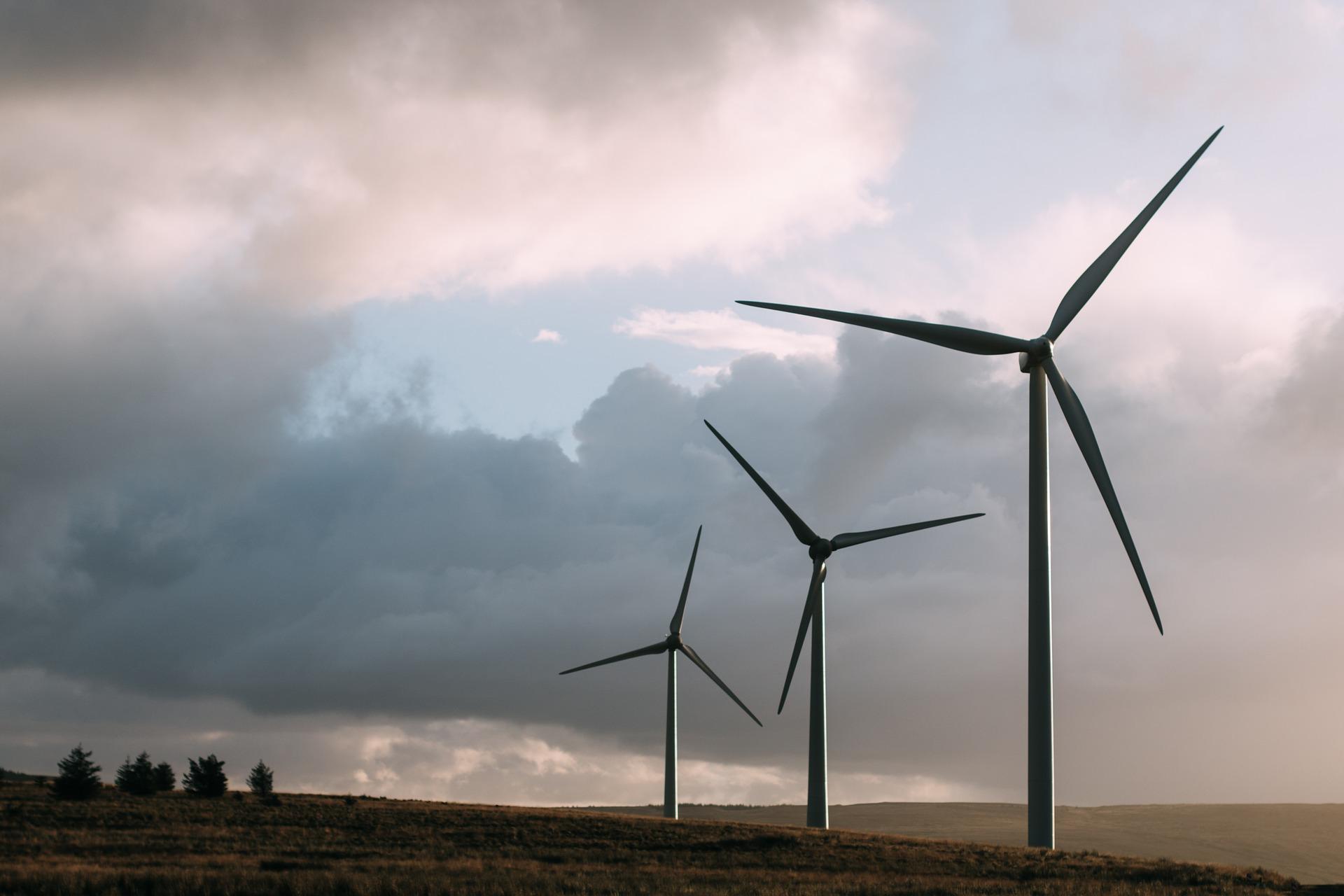 subasta de energías renovables