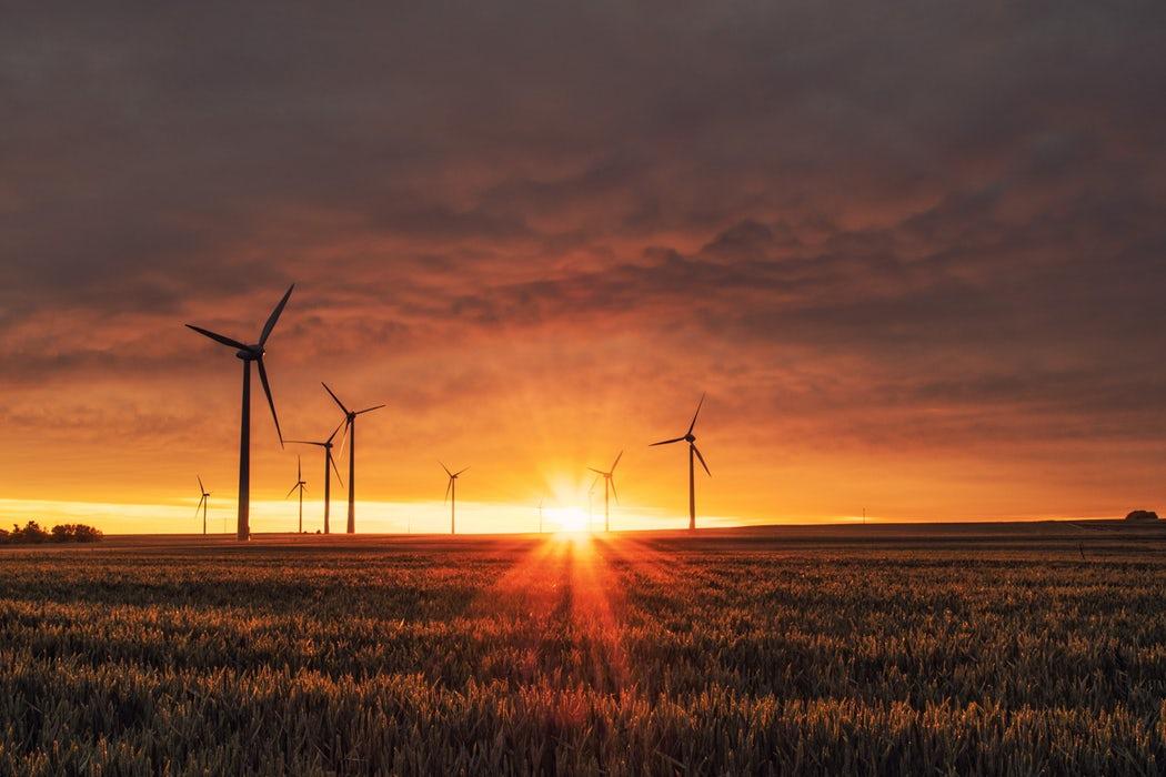 granja de aerogeneradores energías renovables