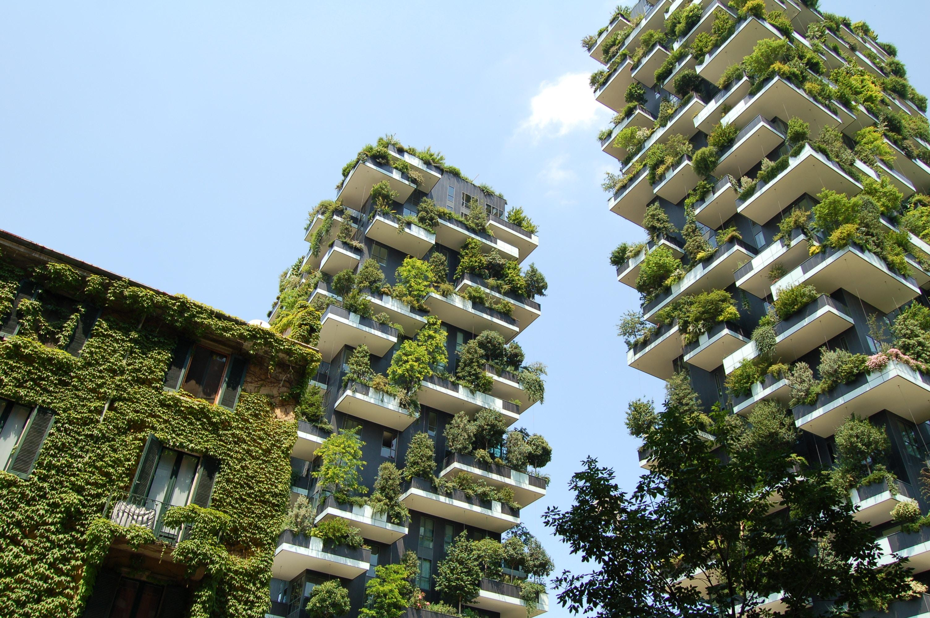sostenibilidad-zonas verdes-residuos
