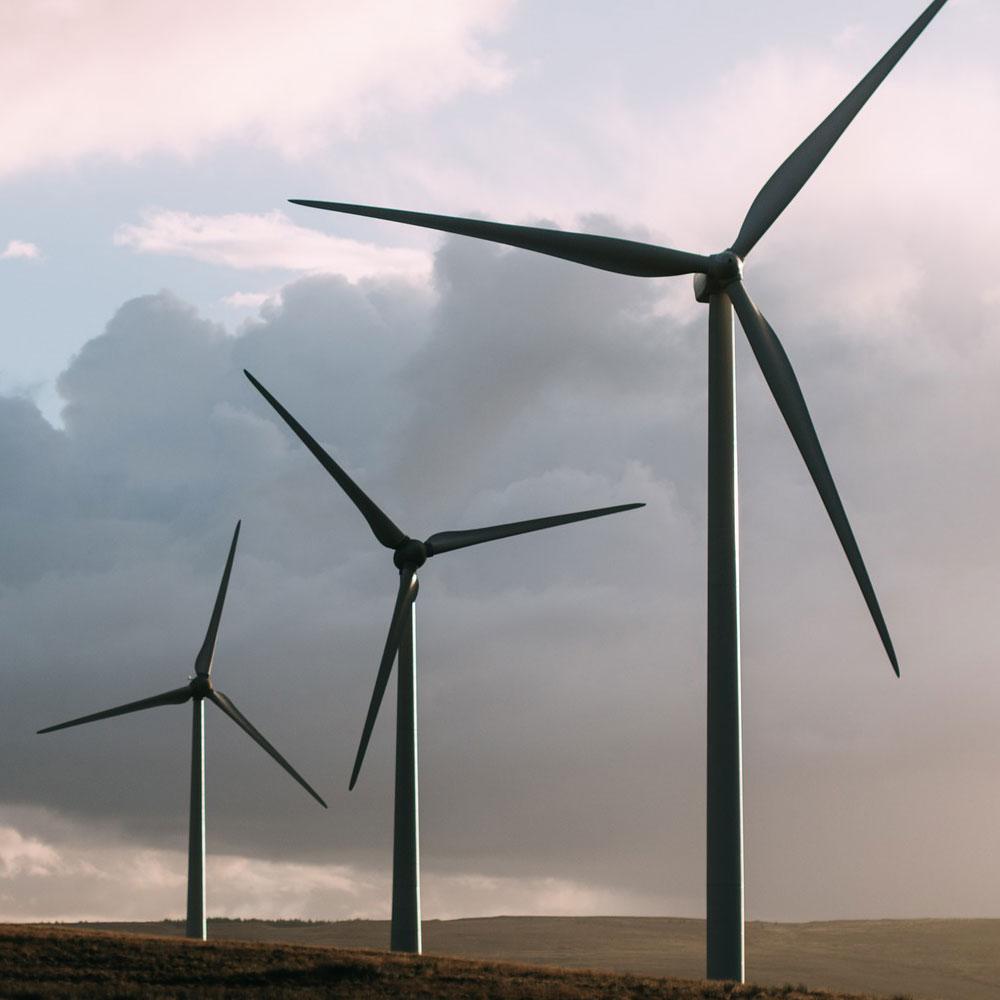 La controversia de la subasta de energías renovables
