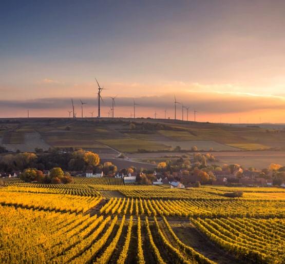 Passivhaus, por un futuro sostenible