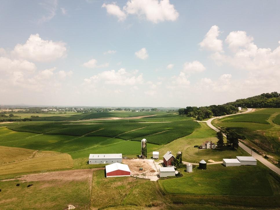 autoconsumo fotovoltaico en granjas